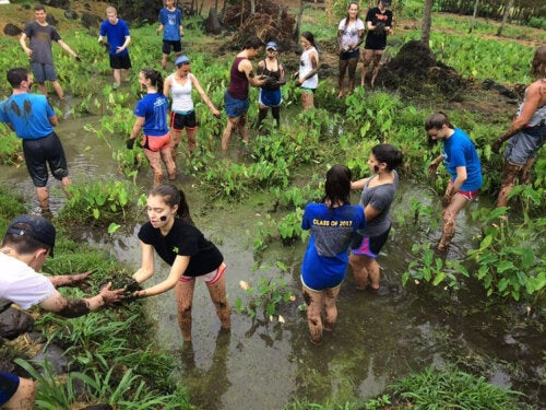 Service Learning Methodology: What is it?