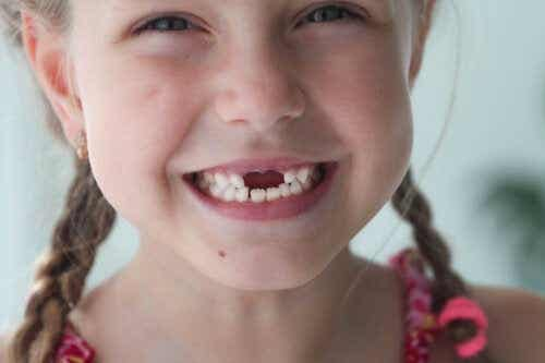 What is the Function of Baby Teeth?