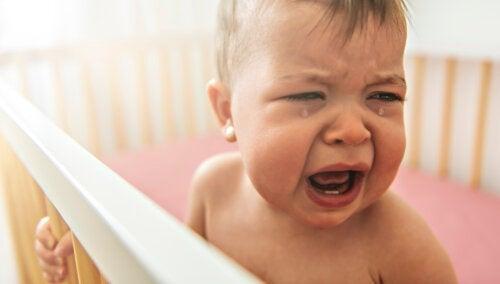 My Child is Afraid of Their Crib