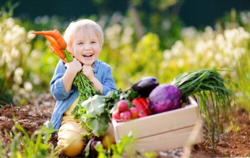 Vegan Diet for Babies: What You Should Know
