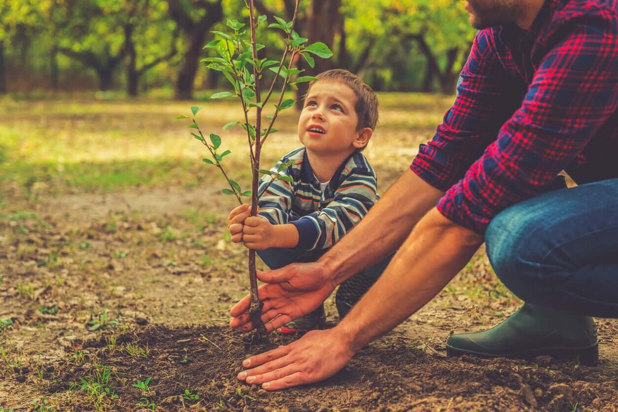 A father planting a tree with his toddler son.